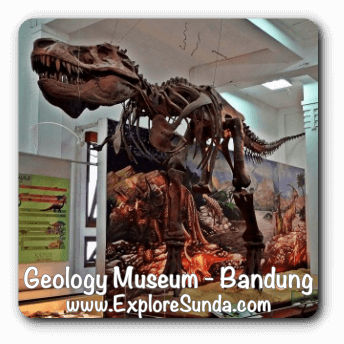 The reasons why Geology Museum is the best museum in Bandung