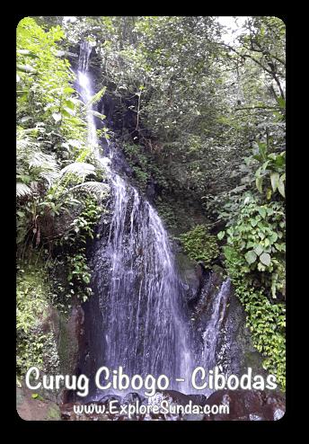 Curug Cibogo (Cibogo Waterfall) in Cibodas Botanical Garden