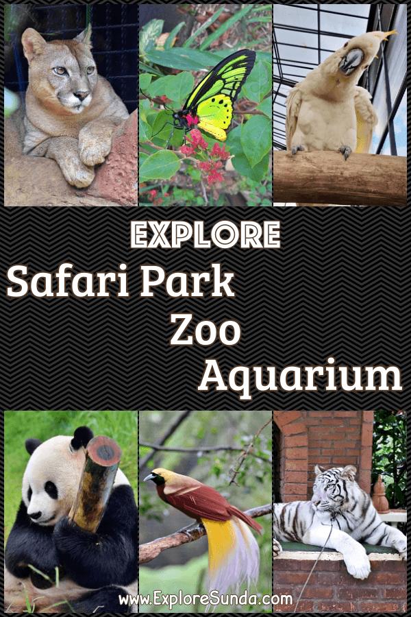 Let's explore the best #SafariPark #Zoo #Aquarium in the land of #Sunda and #Indonesia   #ExploreSunda.com