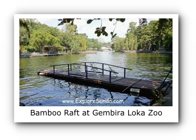Crossing the Lake using Bamboo Raft at Gembira Loka Zoo