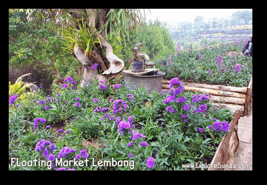 Flower bushes at Rainbow Garden in Floating Market Lembang.