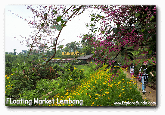 Colorful flowers and bushes in Rainbow Garden - Floating Market Lembang.