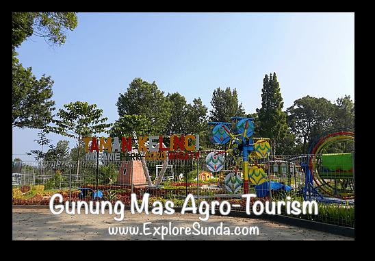 Taman Kelinci, the tiny amusement park at Gunung Mas Tea Agro-Tourism, Puncak