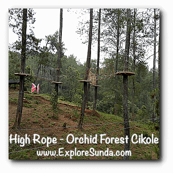 High Rope at Orchid Forest Cikole