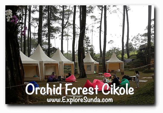 Cafe at Orchid Forest Cikole