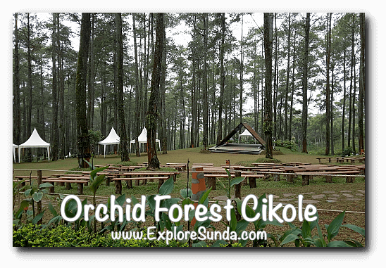 Open Air Stage at Orchid Forest Cikole