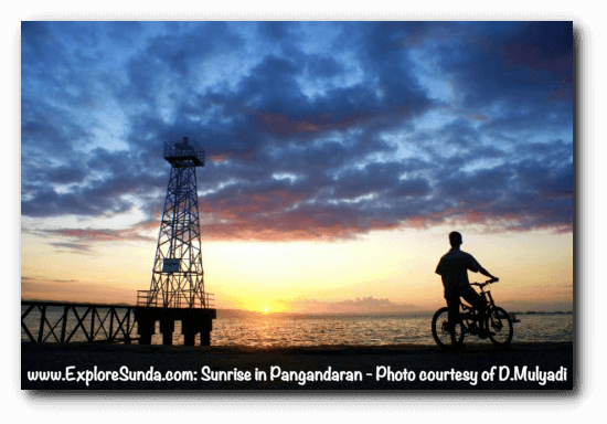Start your day in Pangandaran beach by watching sunrise in the East coast.