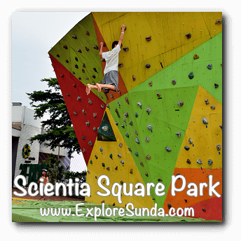 Wall climbing at Scientia Square Park, Summarecon Serpong