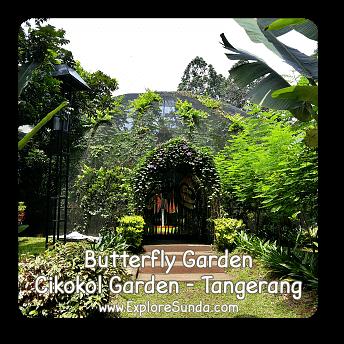 Butterfly Garden at Cikokol Garden - Tangerang.
