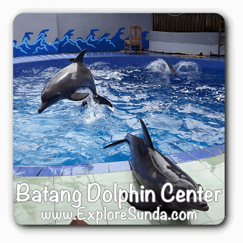 Batang Dolphin Center, Central Java.