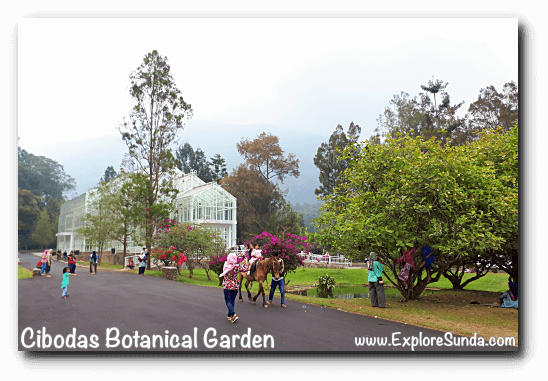 The Glass House in Cibodas Botanical Garden, Puncak