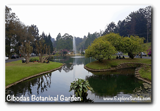 The fountain in front of the glass house in Cibodas Botanical Garden, Puncak