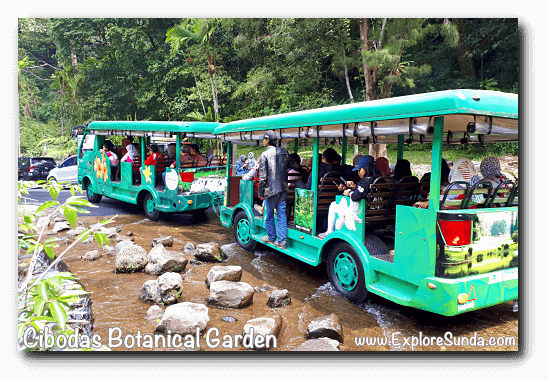 Shuttle bus in Cibodas Botanical Garden, Puncak