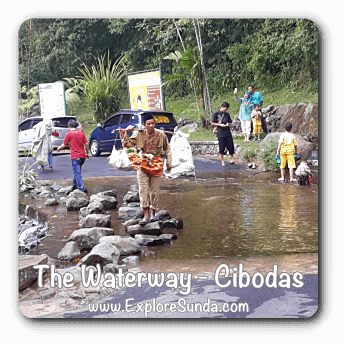 Waterway in Cibodas Botanical Garden, Puncak