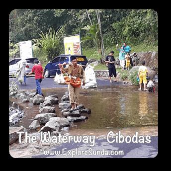 The Waterway in Cibodas Botanical Garden