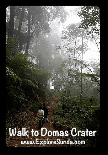 Trail to Domas Crater, Tangkuban Perahu - Cikole, Lembang