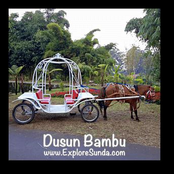 Horse cart ride at Dusun Bambu,  Cisarua - Lembang