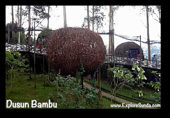 Lutung Kasarung, the lovebird nest, in Dusun Bambu,  Cisarua - Lembang