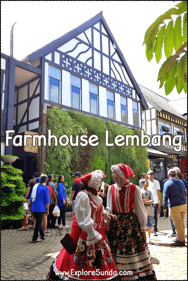 Rent European costumes, take lots of selfies, go shopping and pet the animals in #FarmHouseLembang | #FarmHouseBandung | #FarmHouseSusuLembang