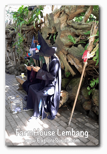 Witches in FarmHouse Lembang ;-)