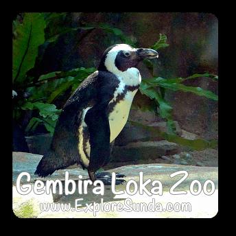 Gembira Loka Zoo, Yogyakarta