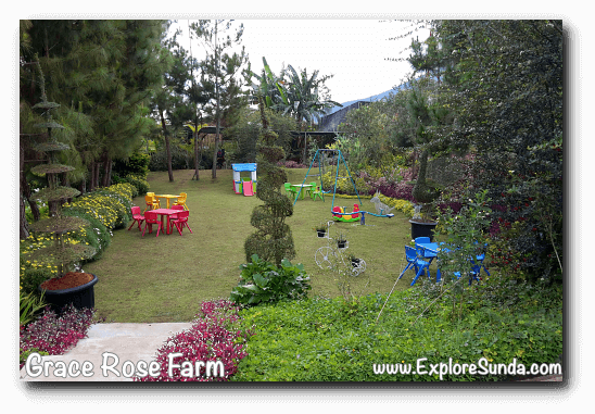 Playground within a garden inside Grace Rose Farm in Cisarua, Lembang