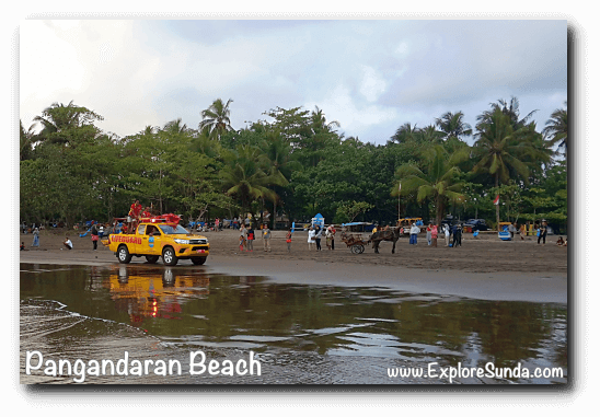 Ride a delman (traditional horse cart) on the beach, while Pangandaran lifeguards patrol the beach.
