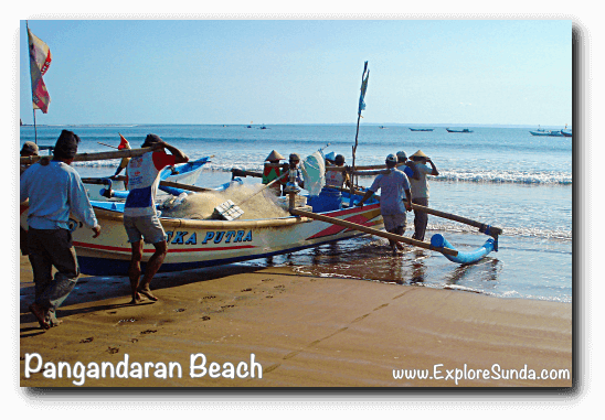 Fishermen in Pangandaran used to carry their boat from dry shore to the shoreline. Can you imagine how strong they are?
