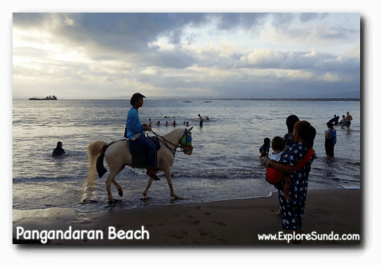 Riding a horse at Pangandaran beach
