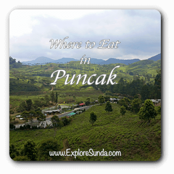 Where to eat in Puncak?  A list of recommended restaurants in Puncak Pass