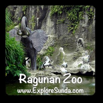 Ragunan Zoo - Jakarta