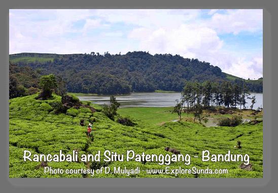 Parks and gardens in the land of Sunda: Rancabali and Situ Patenggang, Ciwidey - Bandung.