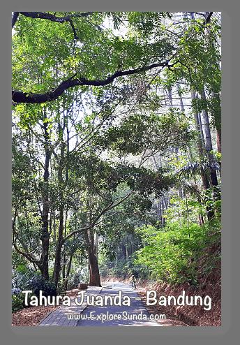 Parks and gardens in the land of Sunda: Taman Hutan Raya (Tahura) Juanda - Dago Bandung.