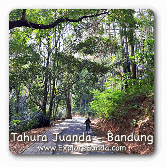 Taman Hutan Rakyat [Tahura] Juanda, Bandung.