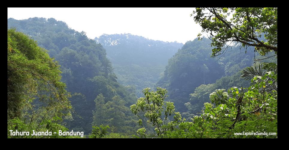 The view from Taman Hutan Raya Ir. H. Djoeanda | TahuraJuanda at DagoPakar, Bandung.