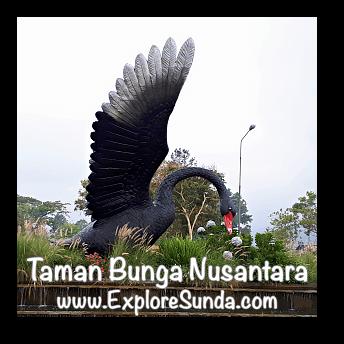 The Black Swan, The Mascot of Taman Bunga Nusantara.
