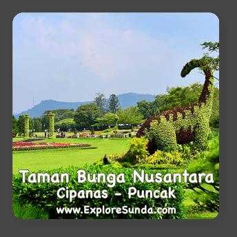 Taman Bunga Nusantara in Cipanas, Puncak