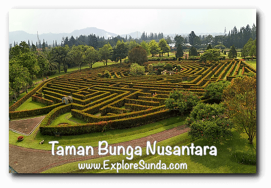 The Labyrinth at Taman Bunga Nusantara in Cipanas, Puncak