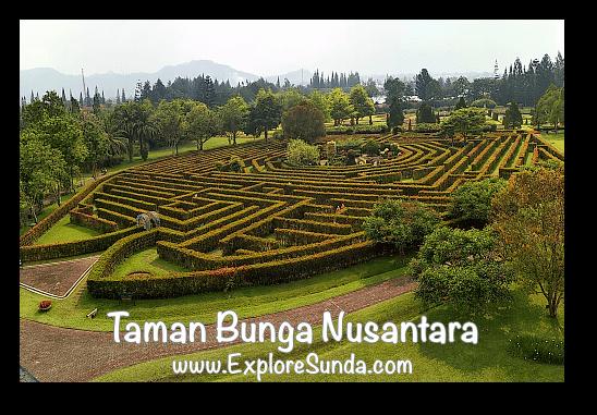The Labyrinth at Taman Bunga Nusantara in Cipanas, Puncak