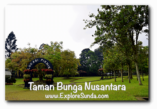One of the picnic location inside Taman Bunga Nusantara in Cipanas, Puncak