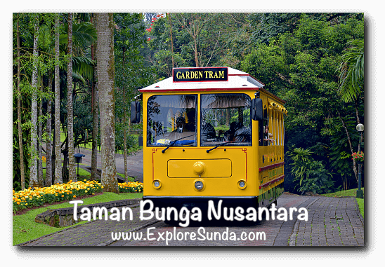 Garden Tram at Taman Bunga Nusantara in Cipanas, Puncak