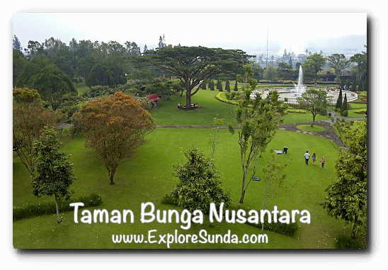 View from watch tower - Taman Bunga Nusantara in Cipanas, Puncak