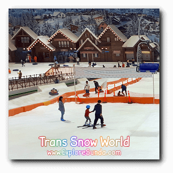 Learn how to ski in Trans Snow World.
