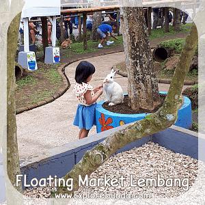 Feeding the rabbit at Rabbit Garden - Floating Market Lembang.